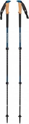 Black Diamond Alpine Carbon Cork WR Pole