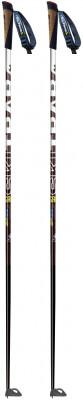 Ski Trab Piuma Gara Poles