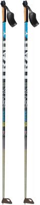 Ski Trab Vertical Piuma Poles